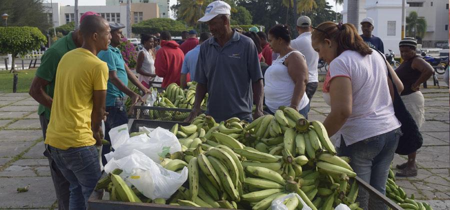 Alcaldía municipal y el INESPRE instalan mercado de productores frente al Ayuntamiento
